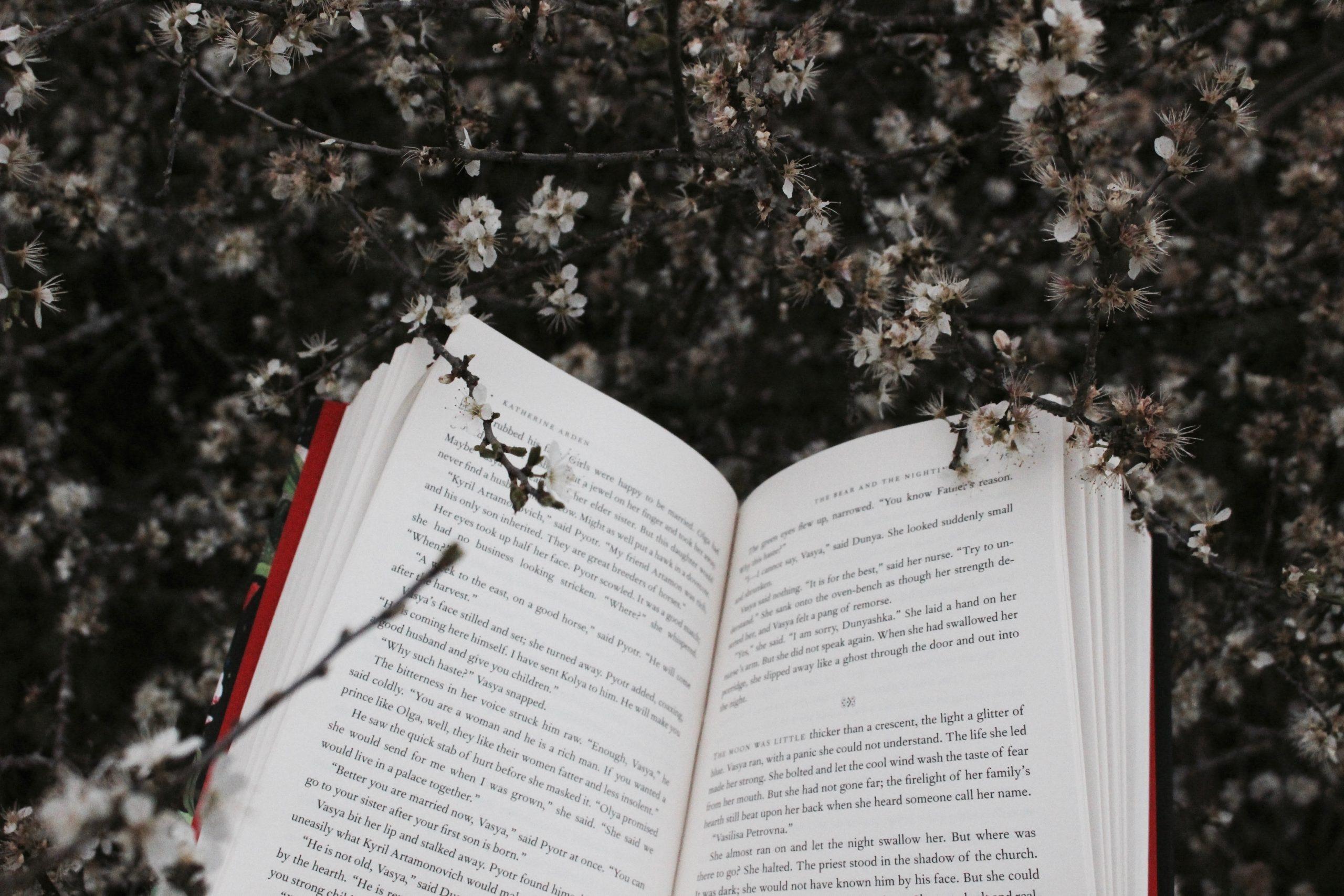La recommandation littéraire de Lise Mairesse